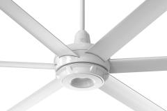 es6 Ceiling Fan: White